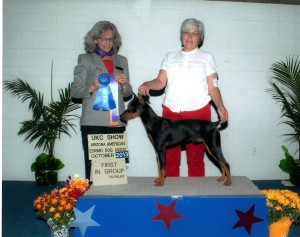 Wolfgang takes Group 1 win at the UKC show in Phoenix, Arizona 2013