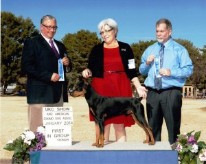 Wolfgang wins TWO Group 1s in Phoenix, Arizona